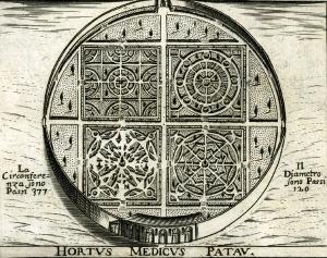 Hortus MedicusPatavinys_1629